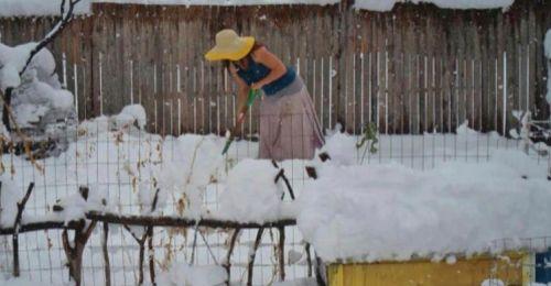 I can't wait any longer, I'm gardening!