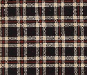 sc3811-penneyhill-plaid-shower-curtain_swatch_lrg